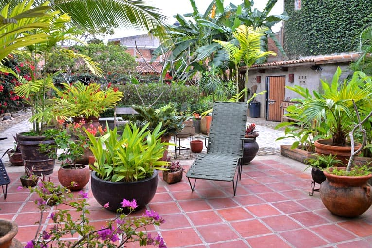 Tropical container garden flourishes on this Saltillo tile patio.