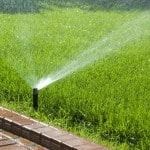 popup sprinkler watering lawn