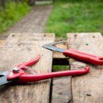 garden pruning tools