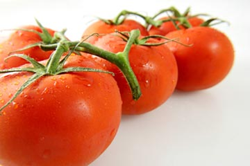 vegetable-gardening-tomatoes