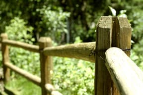 wooden fence rails and posts