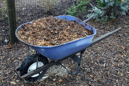Amending the soil is key to successful vegetable gardening. Photo: Freerangestock