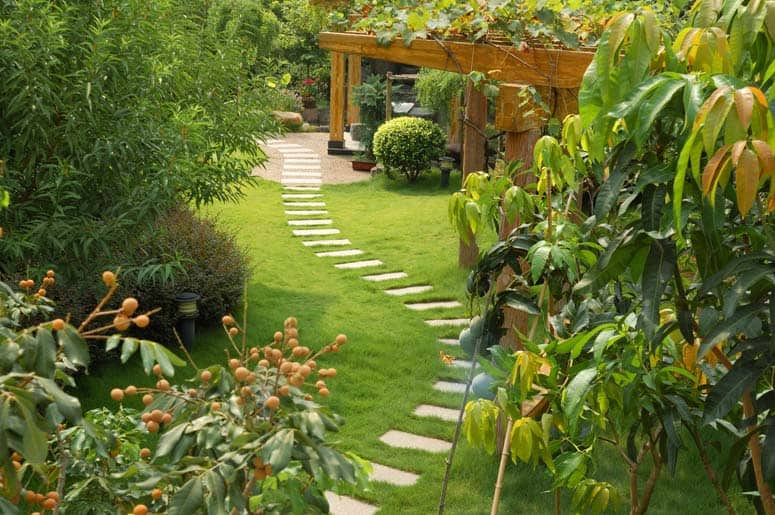 green lawn with stepping stones garden path