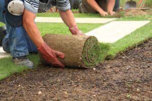 installing sod lawn