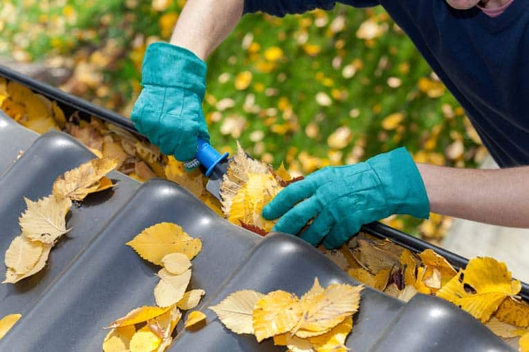 Cleaning gutters with trowel and gloves