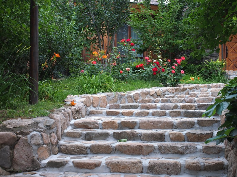 Rose bushes and grass next to garden steps made of rounded retaining stones.