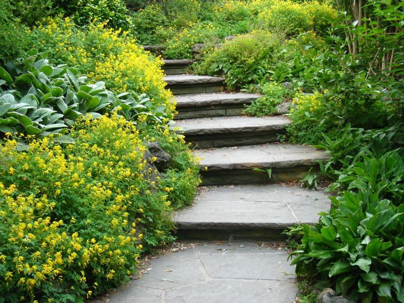 Smooth-cut flagstone stairs leading through a lush garden.
